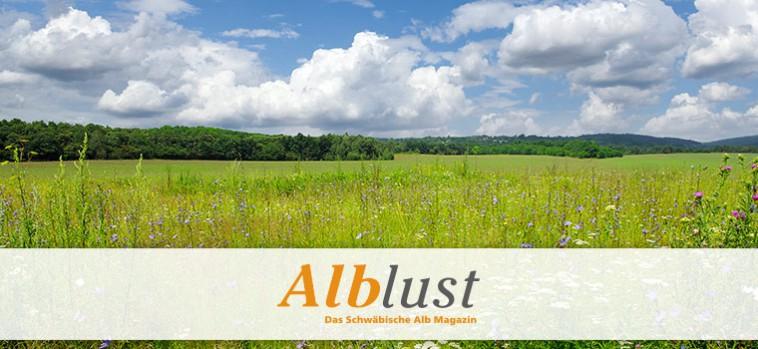 uebersicht_alblust
